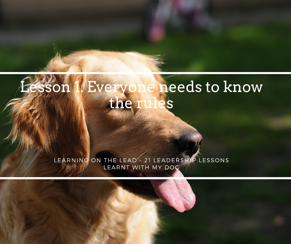 Learning On the Lead - Lesson 1