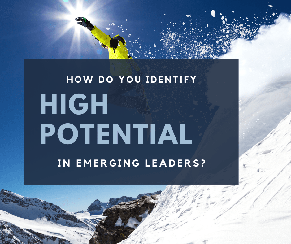 Identifying High Potential in Emerging Leaders. Single Skier High Ski Jump
