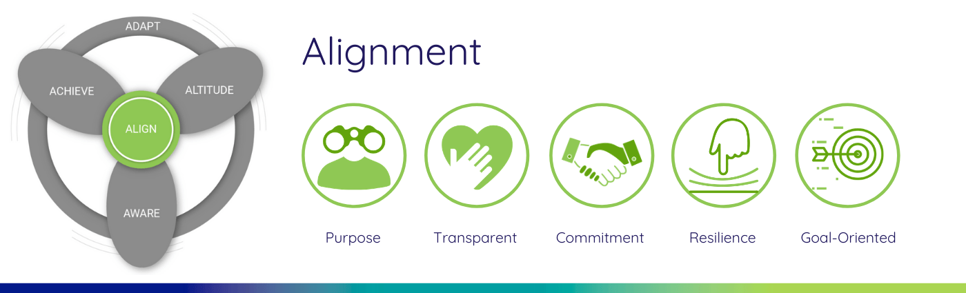 Alignment Leadership